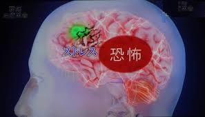 腰痛名張市整骨院伊賀市鍼灸肩こり交通事故治療膝痛頭痛