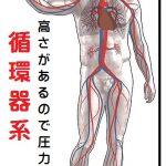 名張市整骨院接骨院腰痛肩こり交通事故治療伊賀市鍼灸骨盤矯正