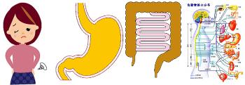 便秘胃腸自律神経